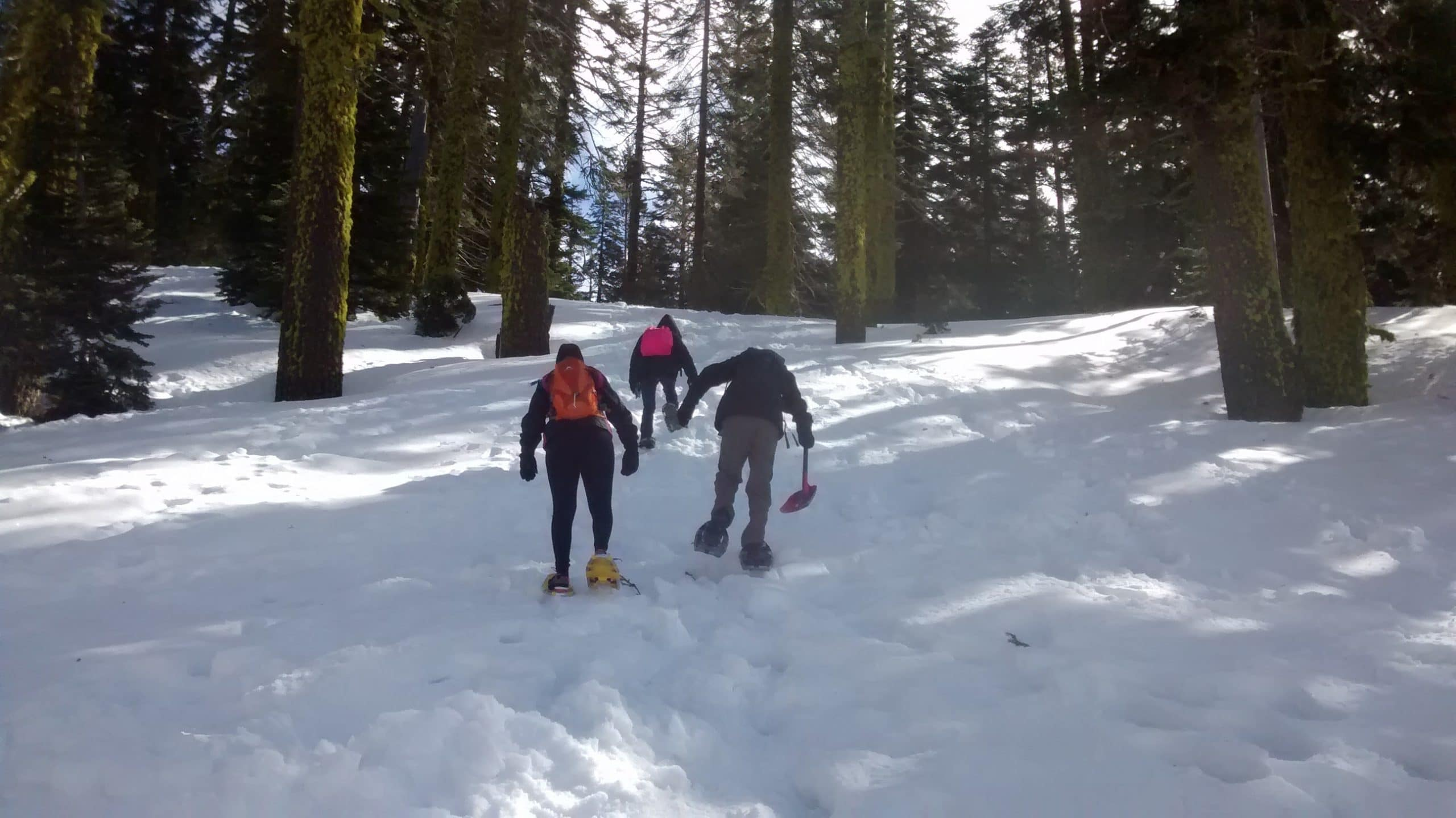 Science on Snowshoes