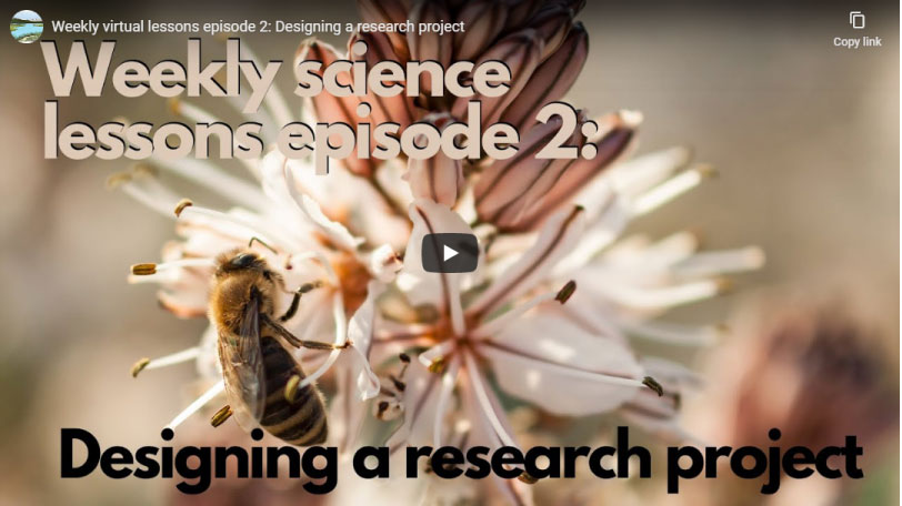Phenology Series Episode 2 | How Scientists Study Phenology