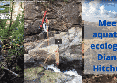 Lunch With A Scientist: aquatic ecology with Diana Hitchen