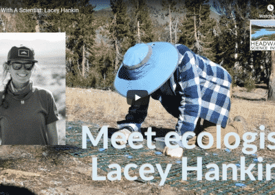 Lunch With A Scientist: Lacey Hankin