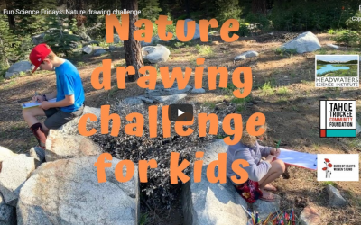 Fun Science Friday: Nature Drawing Challenge