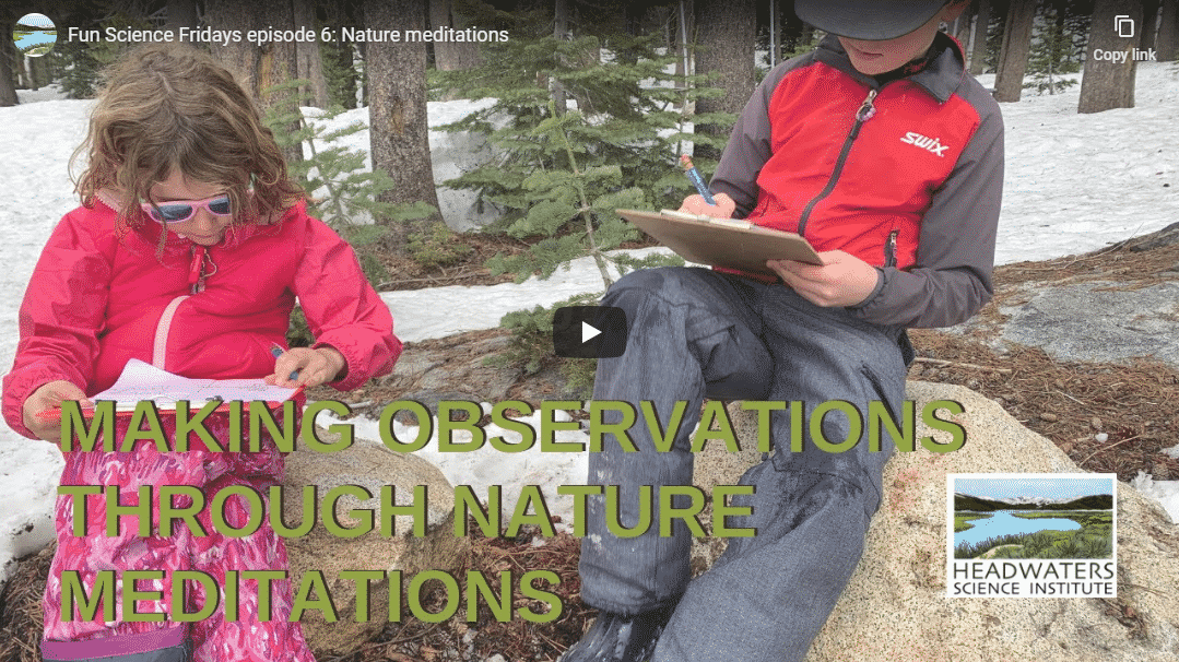 Fun Science Friday: Nature Meditations