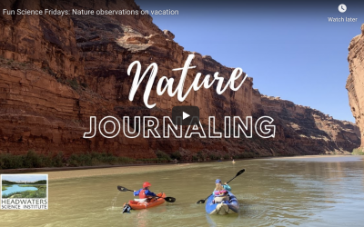Fun Science Fridays: Nature observations on vacation
