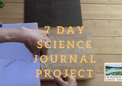 Weekly Science Challenge: 7-day science journal project