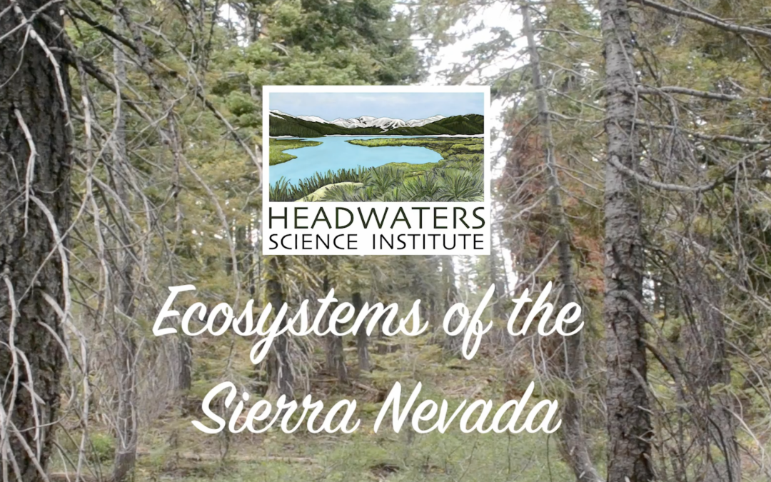 Sierra Nevada Ecosystems Lesson Packet