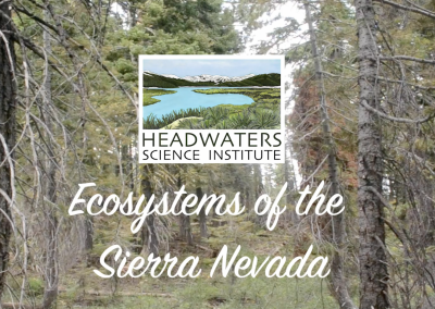 Sierra Nevada Ecosystems Packet