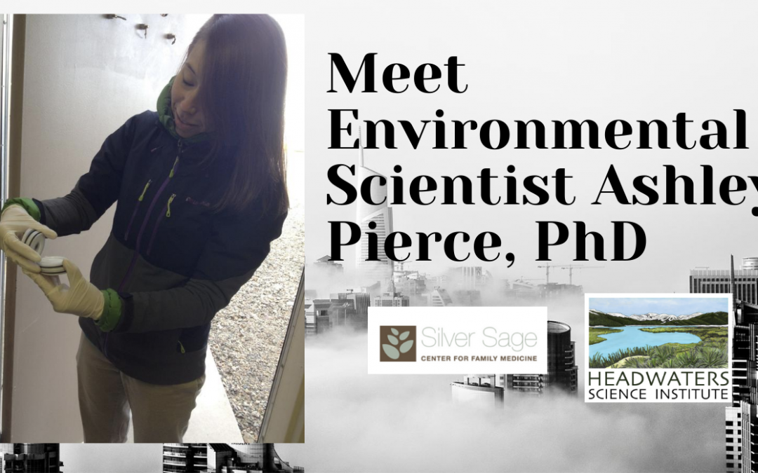 Lunch With A Scientist: Dr. Ashley Pierce