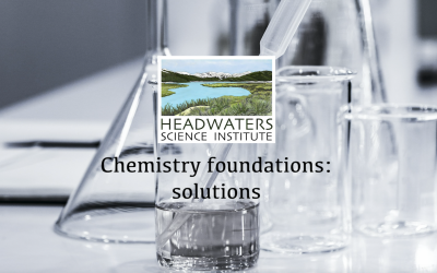 Learning chemistry: solutions and concentration lesson packet