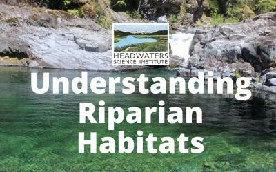 Weekly Science Challenge: Understanding Riparian Habitats