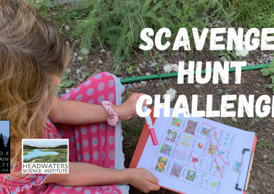 Fun Science Fridays: Scavenger hunt!