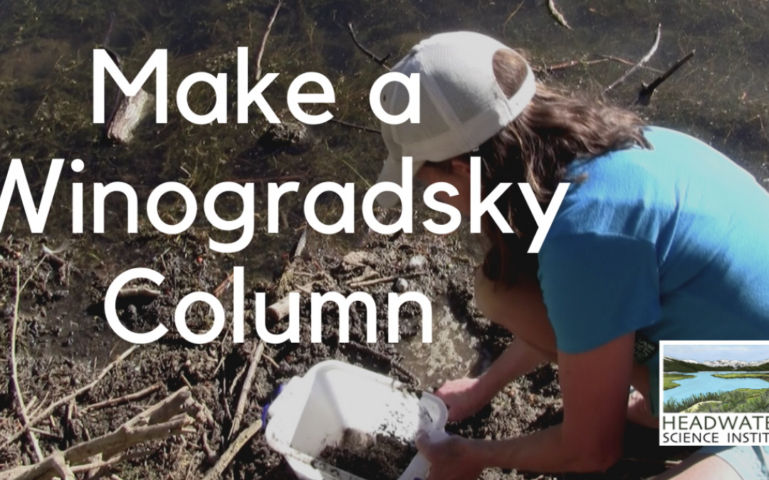 Weekly Science Challenge: Make a Winogradsky Column