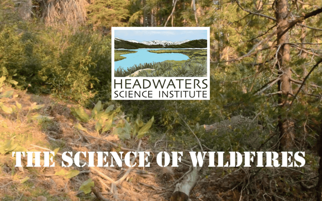 Wildfire Science Lesson Packet
