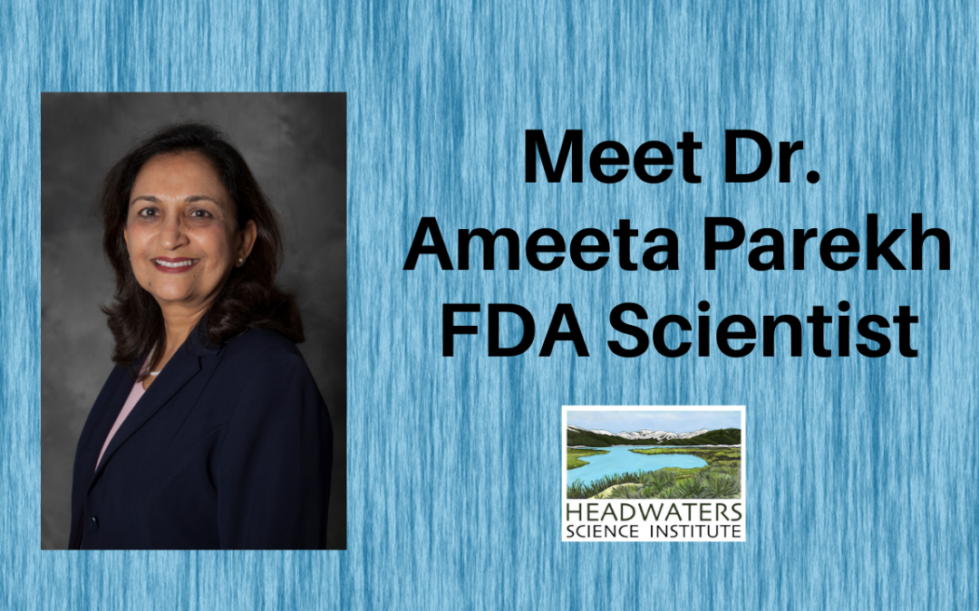 Lunch With A Scientist: Dr. Ameeta Parekh
