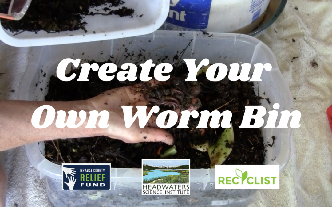Waste Management Lesson and Worm Composting How-To