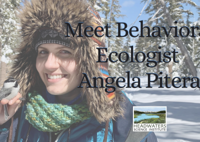 Lunch With A Scientist: Angela Pitera on Bird Social Behavior
