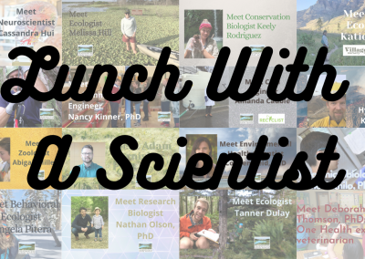 Lunch With A Scientist Talks: Amphibians