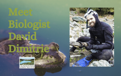 Lunch With A Scientist: David Dimitrie on behavioral interactions in frogs