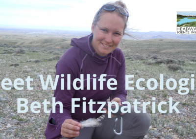 Lunch With A Scientist: Beth Fitzpatrick on Greater Sage Grouse behavior