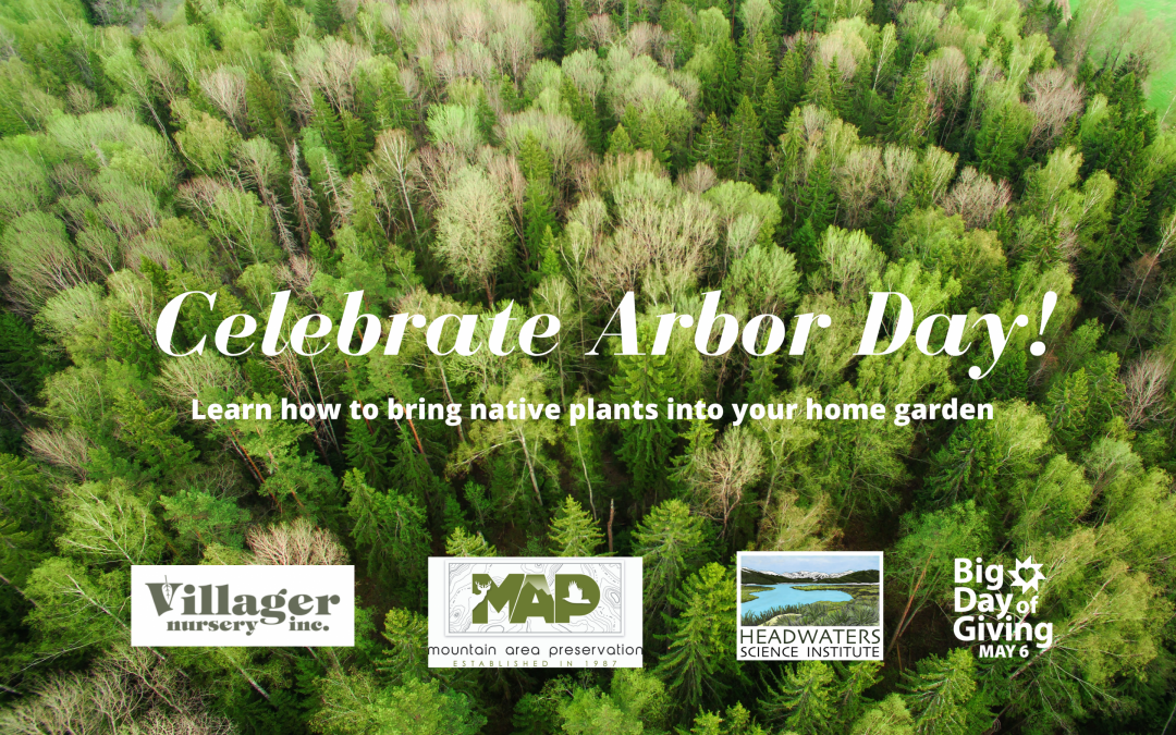 Event: Headwaters' Arbor Day Virtual Planting Party April 30th