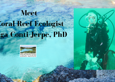 Lunch With A Scientist: Inga Conti-Jerpe on Coral Reefs