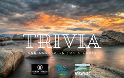 Virtual Trivia and Cocktails for a Cause