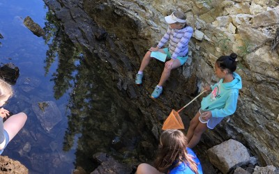 Kirkwood Young Scientist Camp