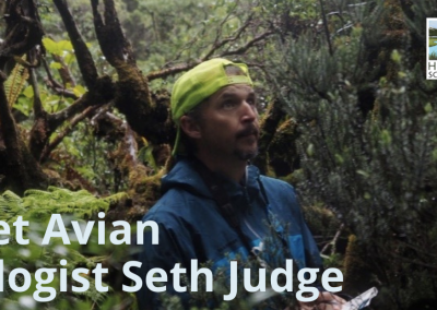 Lunch With A Scientist: Avian ecologist Seth Judge on Hawaiian Honeycreepers