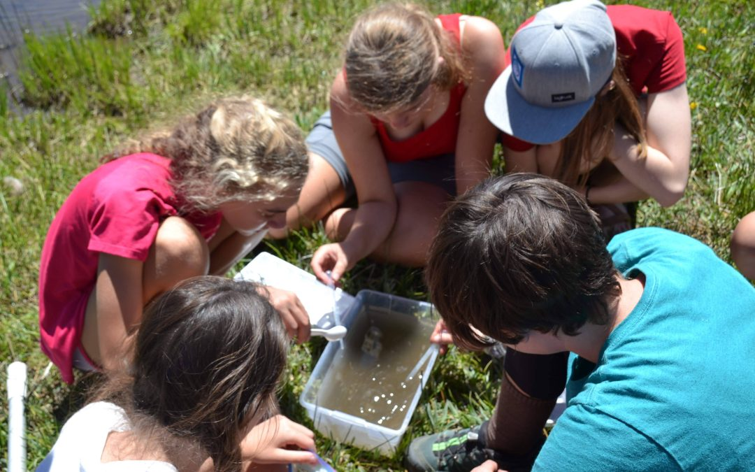 Girls Science Camp… The Science